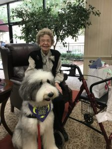 Happy Tails Dog Therapy